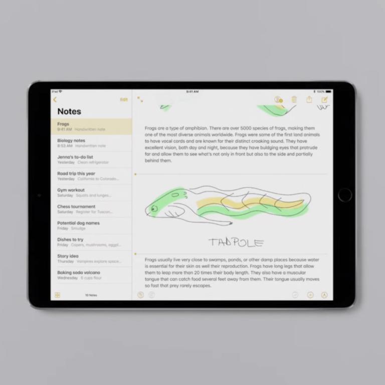 How to: Auf dem iPad Skizzen und Notizen mit dem Apple Pencil machen