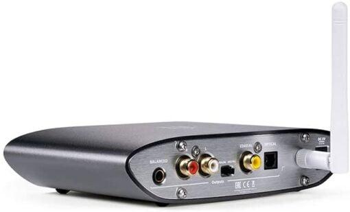 iFi Zen Bluetooth Ports
