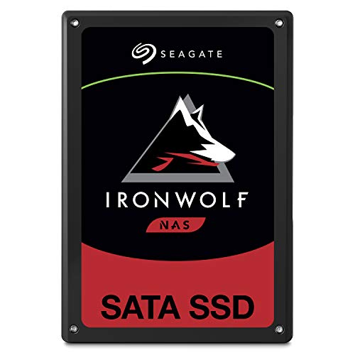 39601 1 seagate ironwolf 110 ssd in